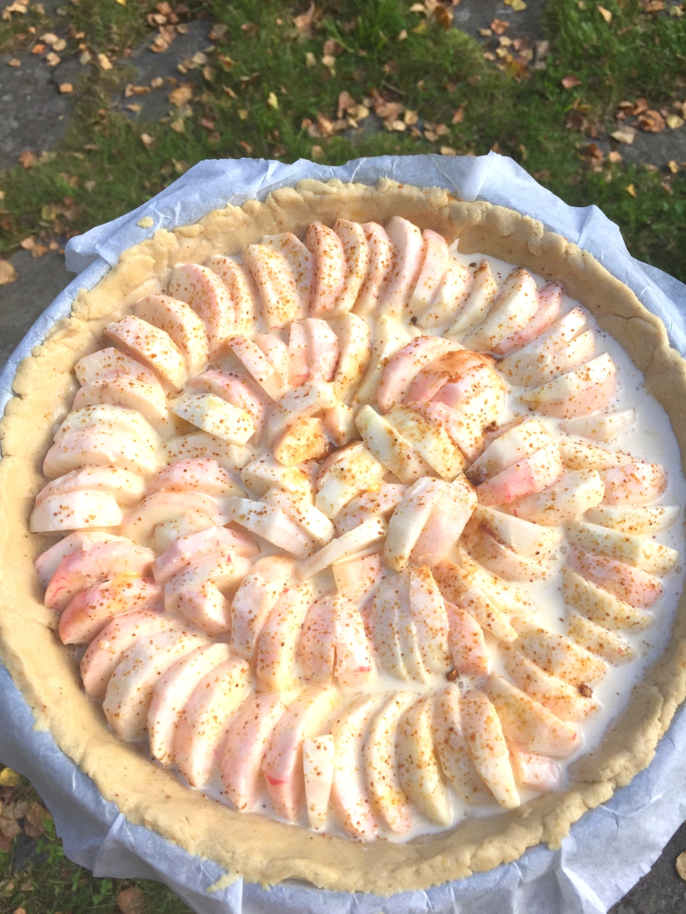 apple-pie-from-the-finnish-countryside-gluten-free-4b