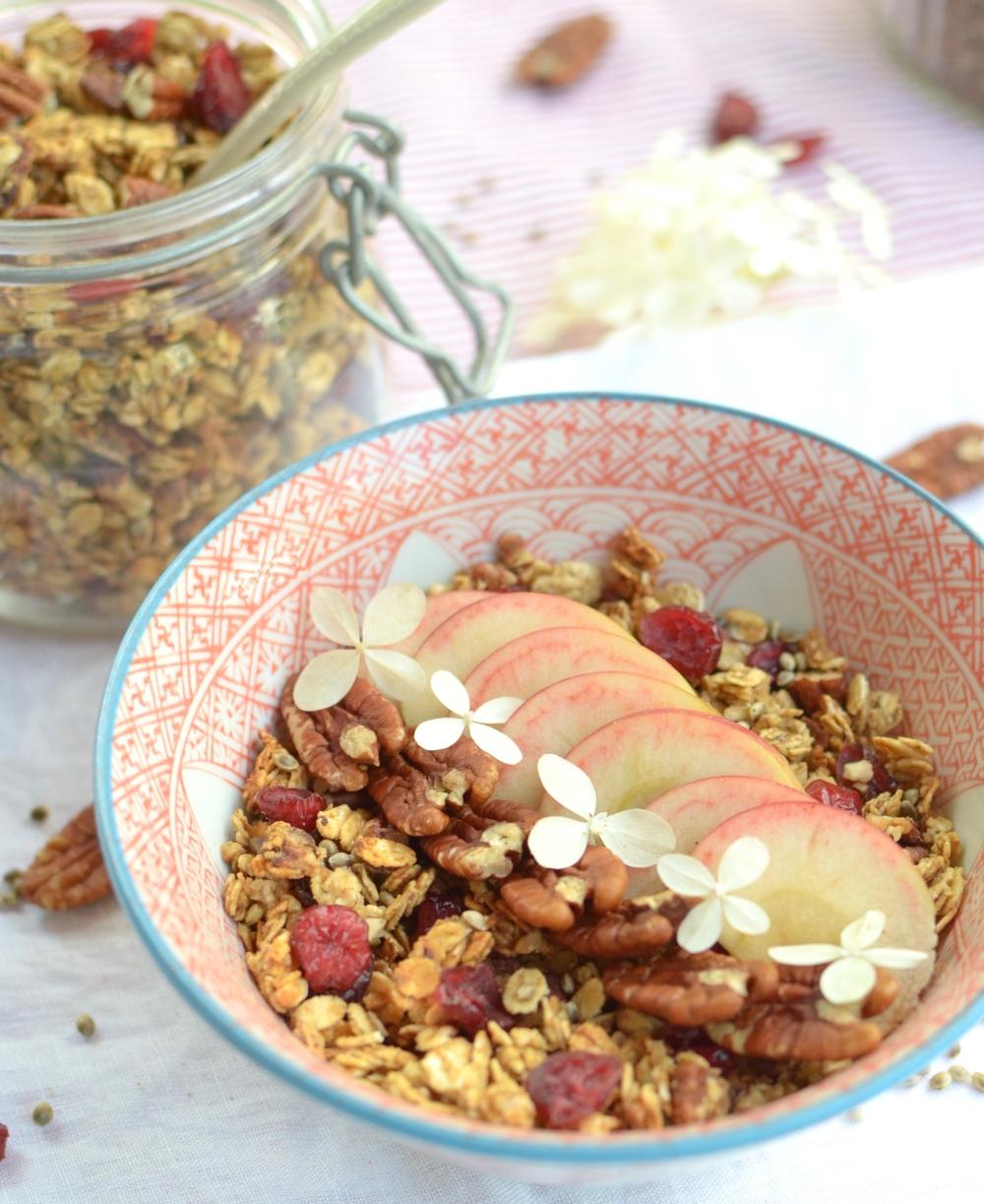 autumn-cranberries-pecans-applesauce-granola3b